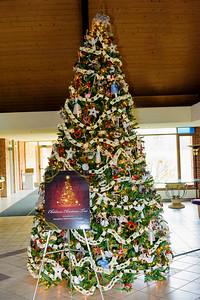 20151215 Faith Formation Christmas Tree-6136 v2