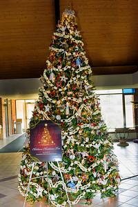 20151215 Faith Formation Christmas Tree-6136 v3