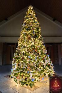 20151215 Faith Formation Christmas Tree-6043 v2 with sign