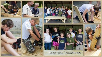 20140601 Habitat Tables ABVM Collage v2