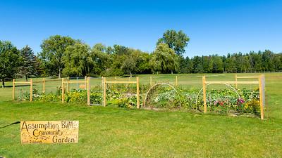 20150914 ABVM Community Garden-2706 small sign 16x9