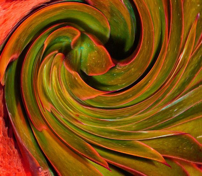 Desert Swirl   (12_0614)