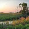 Dawn at Bombay Hook