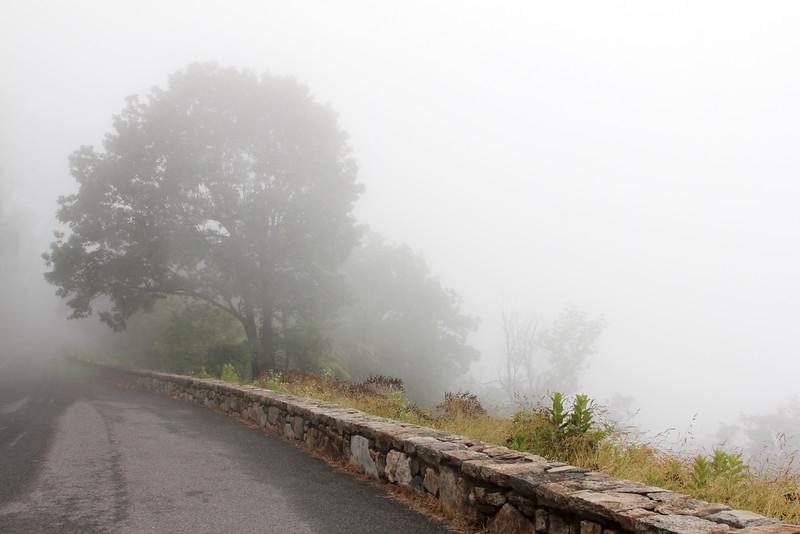Skyline Drive in Fog