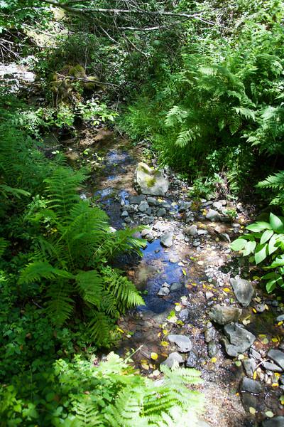 Creek9643