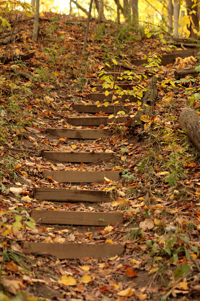 Fall hiking at ACRES Land Trust: Ralph F. Gates Nature Preserve near Crooked Lake.  Neat stairway.