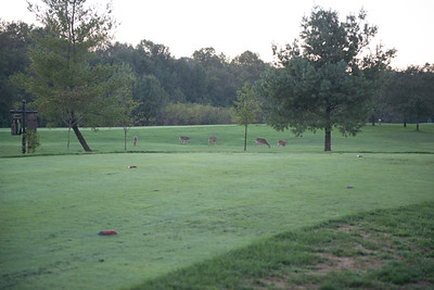 ACS-SOCMA-golf-3561