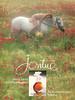 REVLON Jontue 1981 US 'Sensual - but not too far from innocence - The beautiful fragrance by Revlon'