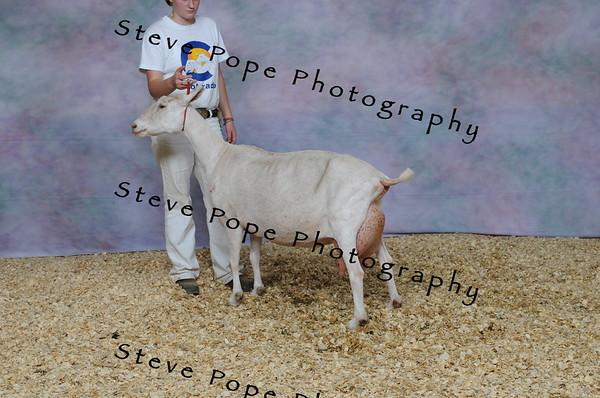 2013 capricornfarms 07414
