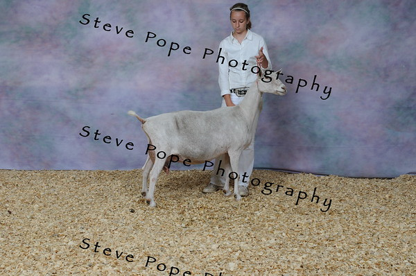 2013 capricornfarms 07213
