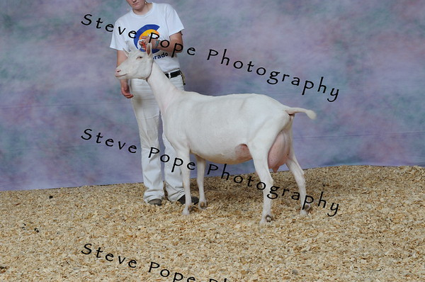 2013 capricornfarms 06636