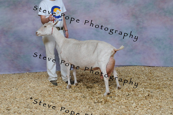 2013 capricornfarms 07415