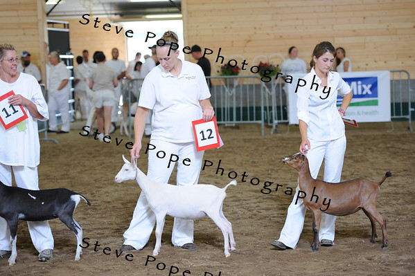 2013 recordedgrade jr show 03887