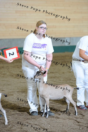 2013 recordedgrade jr show 03904