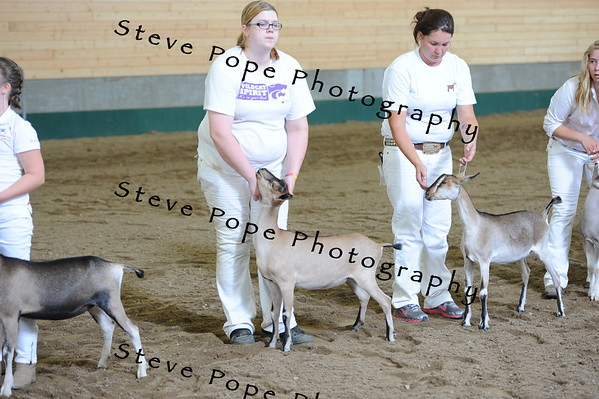 2013 recordedgrade jr show 03903