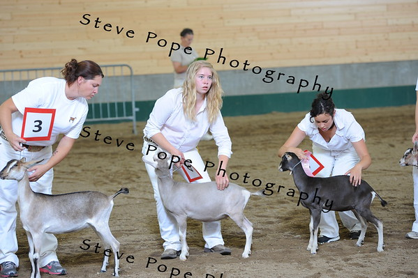 2013 recordedgrade jr show 03913