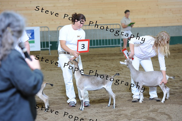 2013 recordedgrade jr show 03912