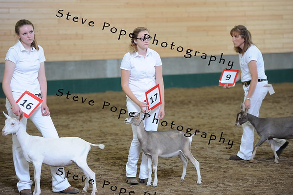 2013 recordedgrade jr show 03892