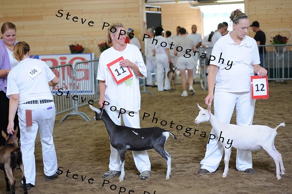 2013 recordedgrade jr show 03886