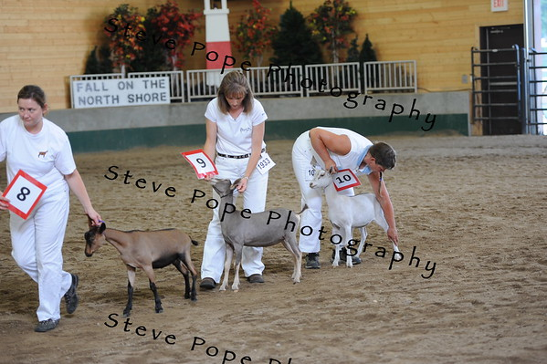 2013 recordedgrade jr show 03882