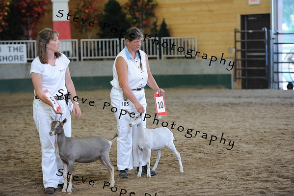 2013 recordedgrade jr show 03885