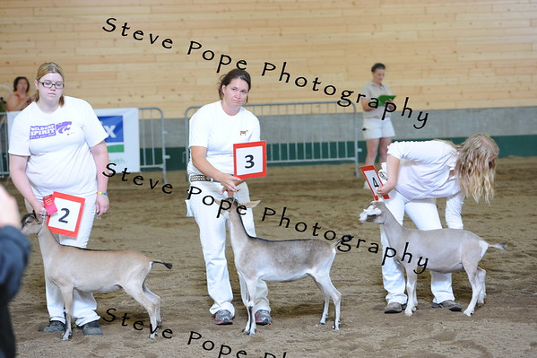 2013 recordedgrade jr show 03911