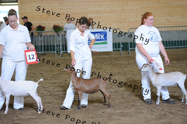 2013 recordedgrade jr show 03888