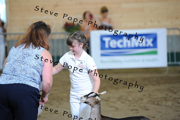2013 recordedgrade jr show 03909