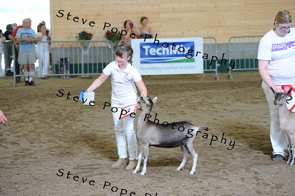 2013 recordedgrade jr show 03908