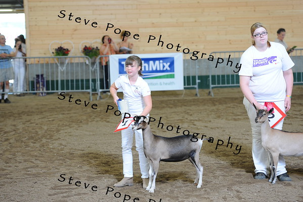 2013 recordedgrade jr show 03907