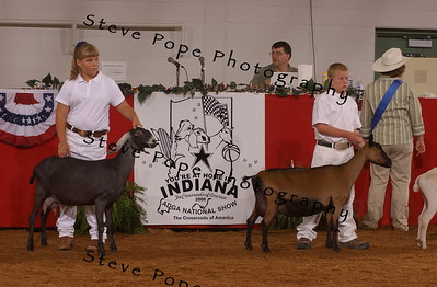 Int 1 Showmanship