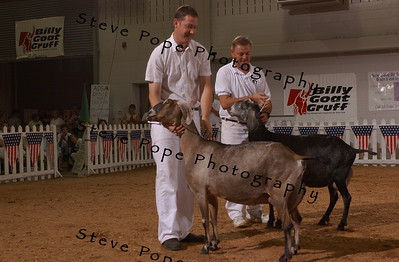2006 National Show