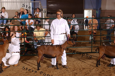 Int. 2 Showmanship