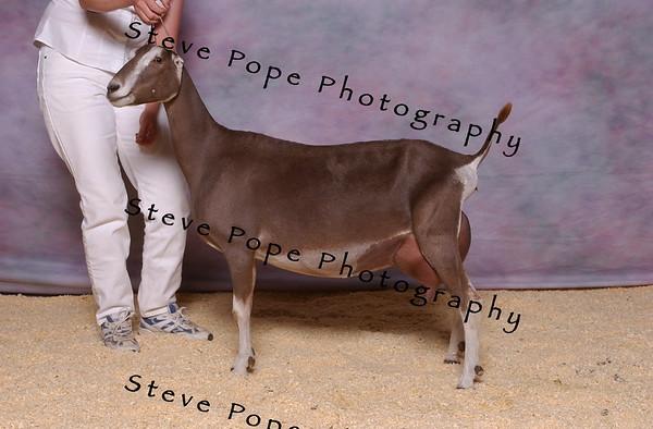 2007 Lam Jones 7880