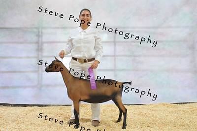 2017 National Show by Last Name
