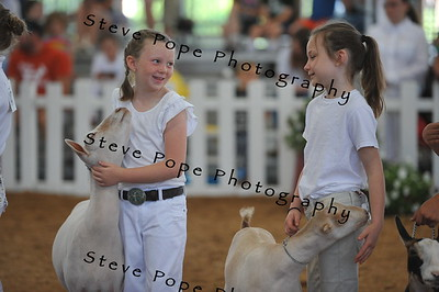 Jr Showmanship