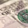 Abstract Five Dollar Bill