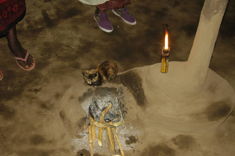 x_28 in the hut - kitten over the fire pit