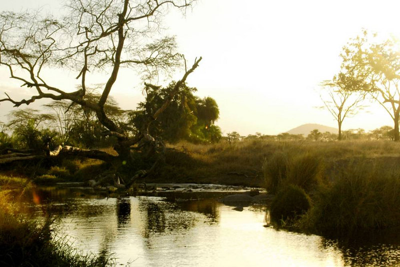 x_50 river at sunset
