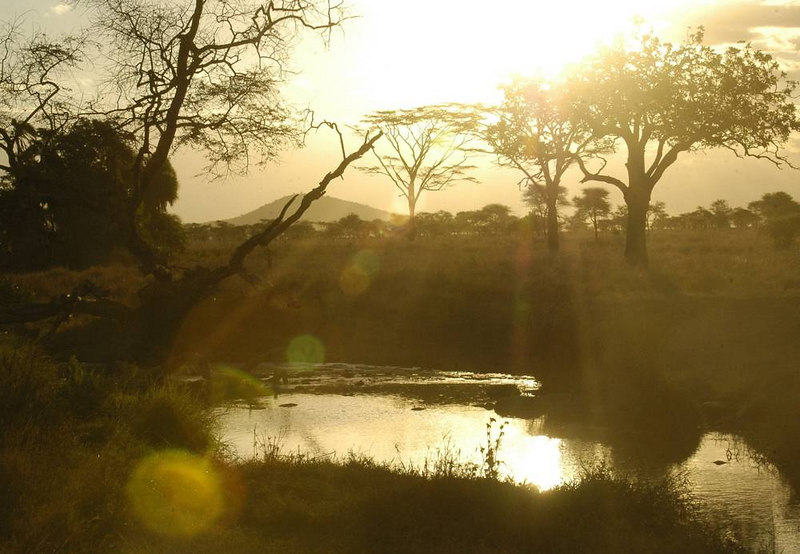 x_49 sunset at the waterhole