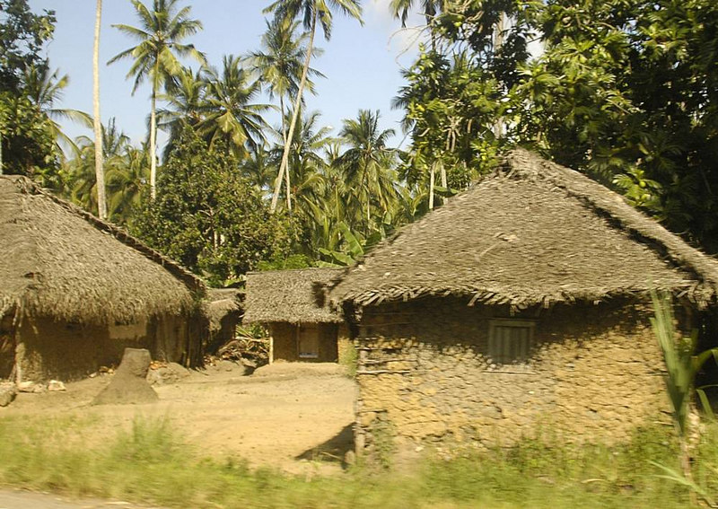 x_53 mud huts in the jungle