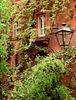 x-1044 foliage-covered facade w_ lanterns