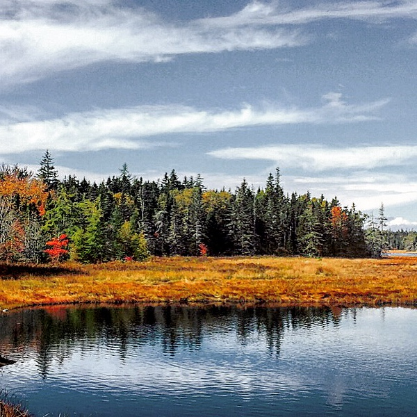 Fall in Acadia National Park, Maine