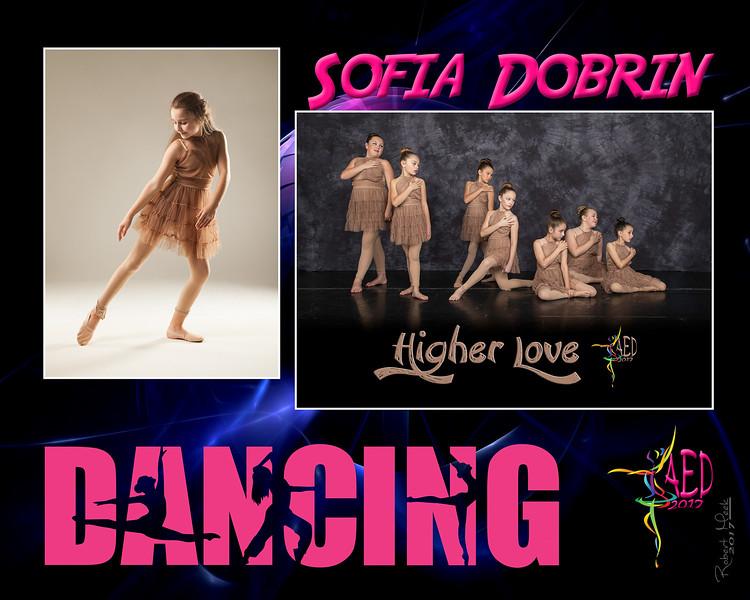 8R_11_Sofia Dobrin