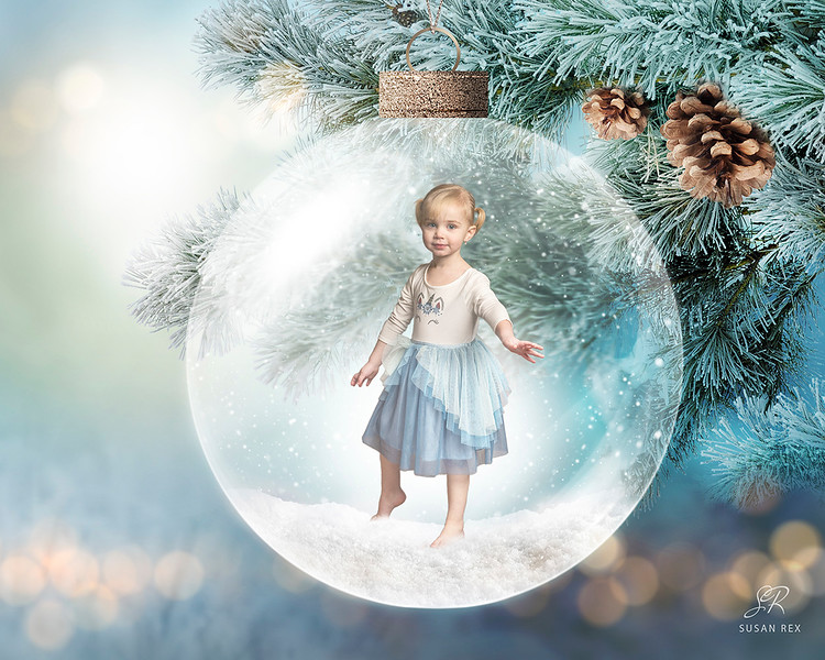 Everly_Pine_Ornament_fb