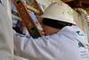 'best of cox day 4 habitat0061-0060