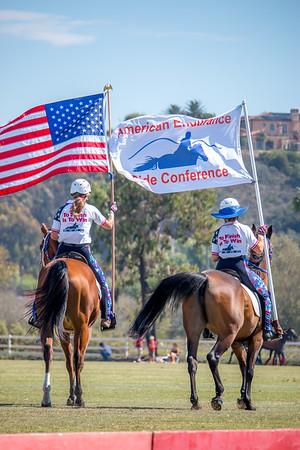 AERC Parade/Arabians- San Diego Polo Club