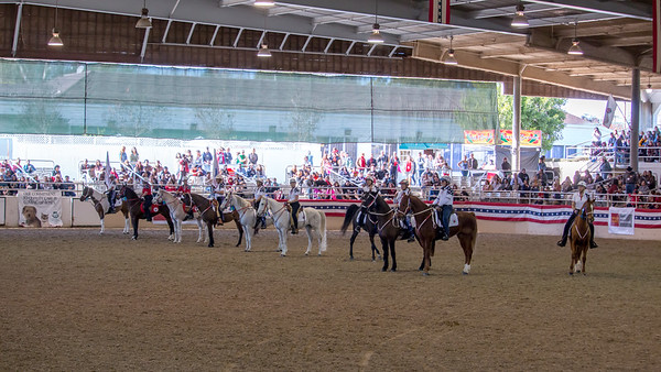 Equestfest 2015