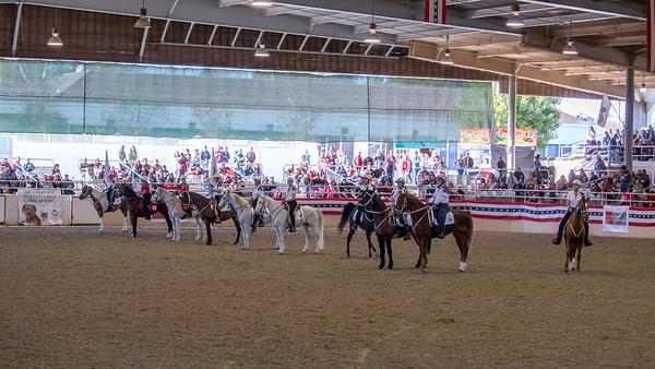 Equestfest 2015