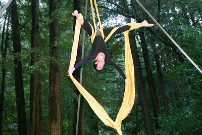 MARIN AERIAL DANCE OLD MILL PARK 0020